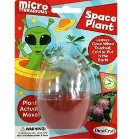 Dunecraft Micro Terrariums,Space Plant