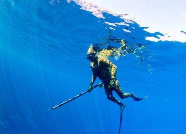 Freedive & Spearfish
