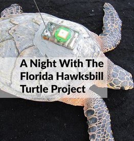 Force-E A Night with the Florida Hawksbill Project