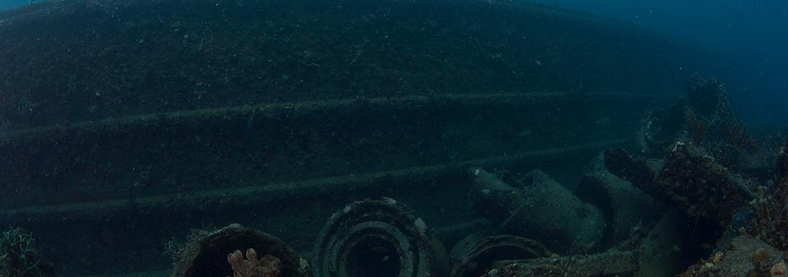 Current image of Sea Emperor