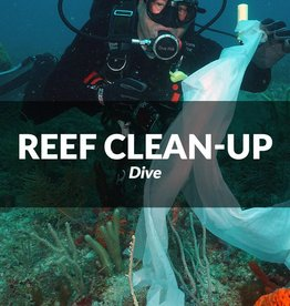 Southeast Florida Reef Clean-up 6/25/17