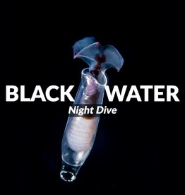 Black Water Night Dive 6/30/17