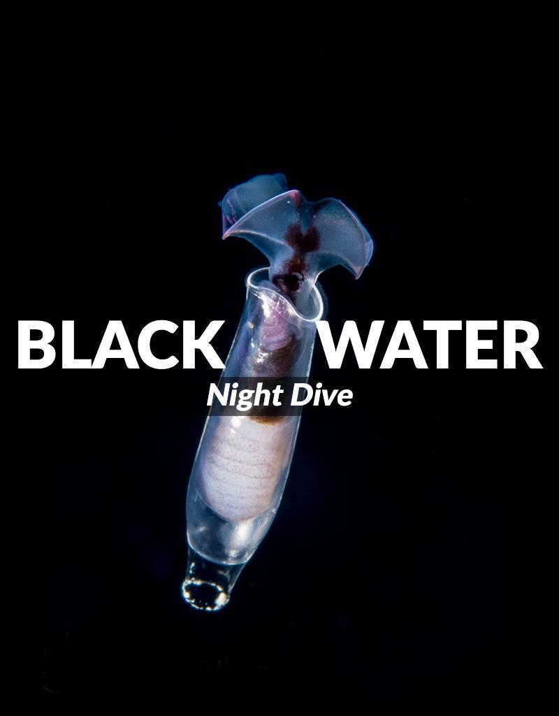 Black Water Night Dive