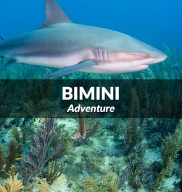 Force-E Bimini Trip- Sept 23 & 24