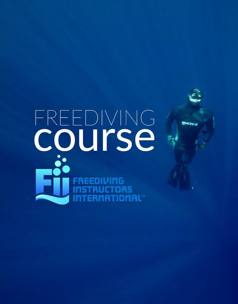 Force e class fii freediving level 1 force e scuba centers force e class fii freediving level 1 xflitez Gallery
