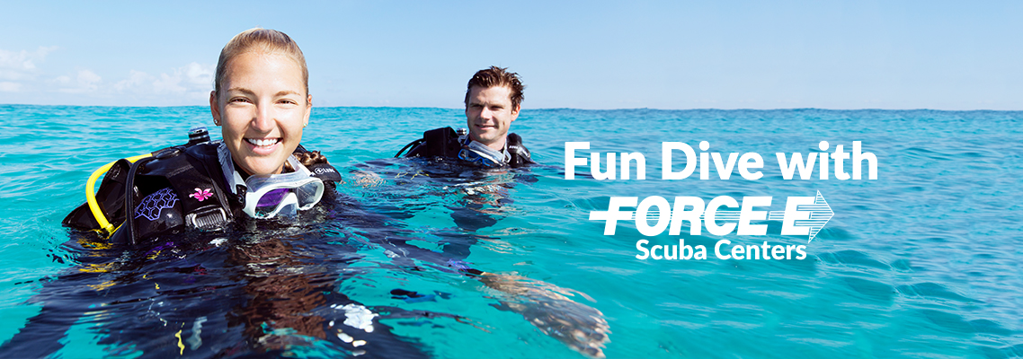 Fun Diving in South Florida