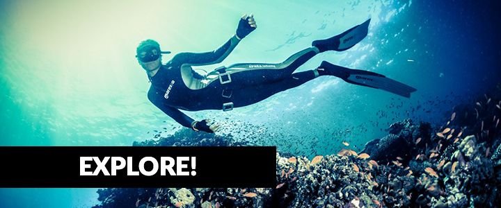 Best South Florida freediving