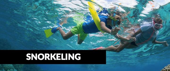 Kids Snorkeling Adventures