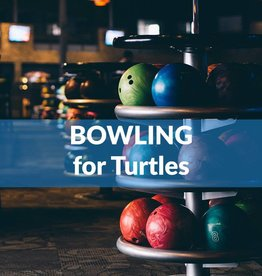 Force-E Bowling for Turtles