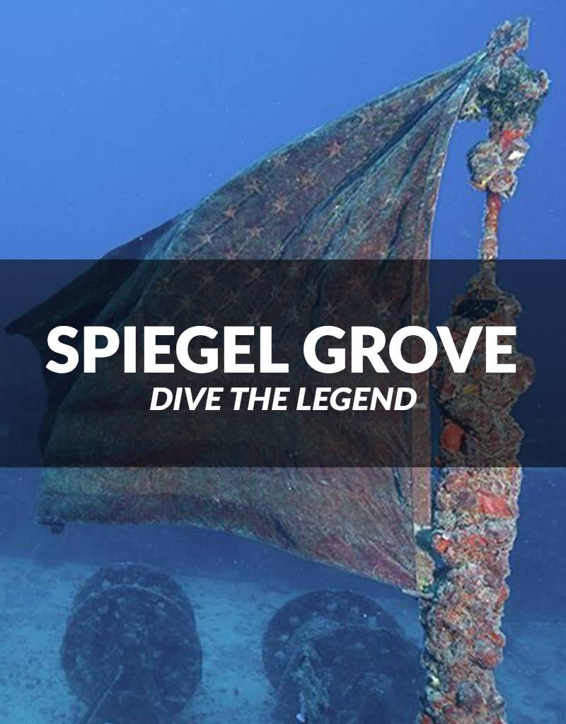 Force-E Dive the Spiegel Grove, April 7, 2018