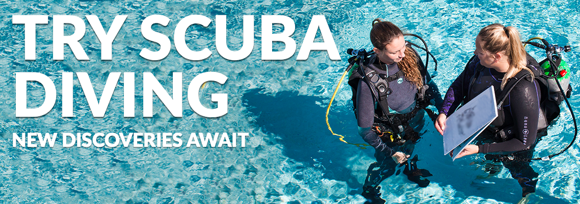 Try Scuba Diving in South Florida