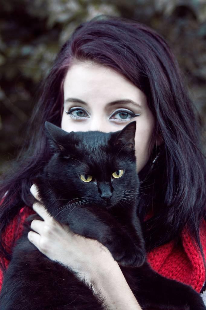 Cat Eye Kit