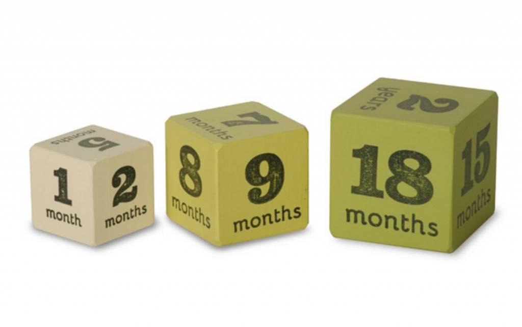 Multi-Size Milestone Baby Age Blocks Green