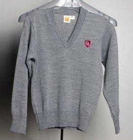 A+ A+ Youth V Neck Sweater