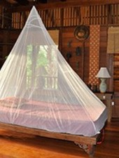 Cocoon Bug/Mosquito Net