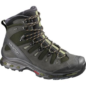 Salomon Quest 4D 2 GTX Mens Iguana Green/Asphalt/dark Titanium