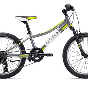 "Giant 2017 XTC JR 20"" Kids Bike"