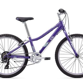 "Giant 2017 Enchant 24"" Lite Kids Bike"