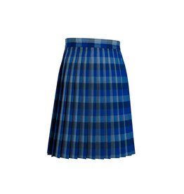 Dennis Uniform Hasting Plaid Knife Pleat Skirt #1886