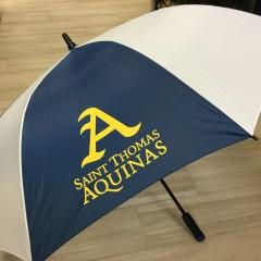 Catchy Grafixs Umbrella
