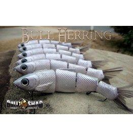 Bull Shad Bull Herring