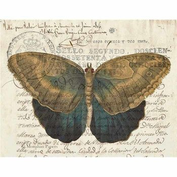 Brown & Indigo Butterfly