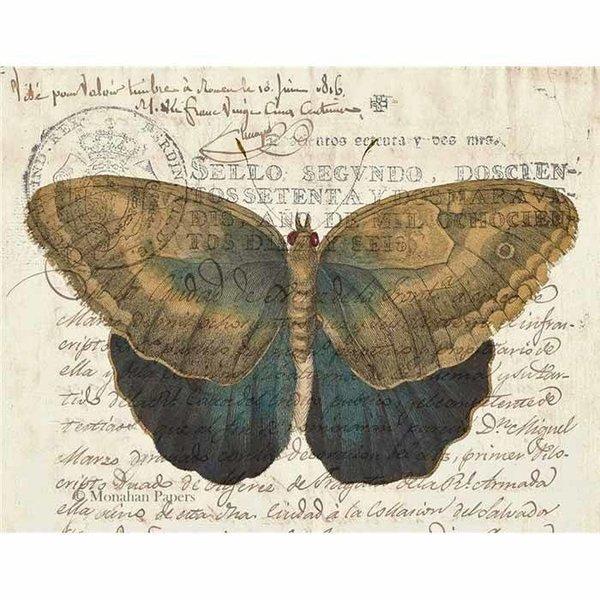 Brown & Indigo Butterfly