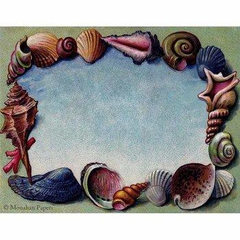 Shells Frame