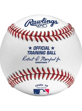 RAWLINGS OFFICIAL MLB TRAINING BALL