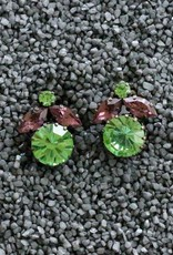 Jewelry FMontague: Green & Pink Flowers