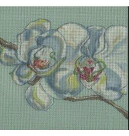 Melissa Prince Orchid<br />8&quot;x8&quot;