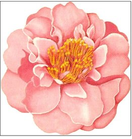 Melissa Shirley Light Pink Camelia  <br />