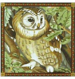Melissa Shirley OWL