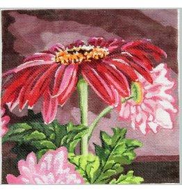 Julie Mar Verbena Daisies #2