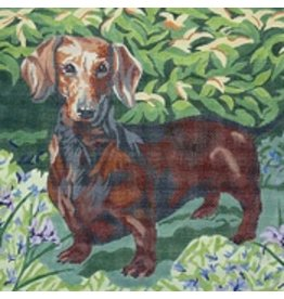 Barbara Russell Dachshund<br />10&quot;x12&quot;