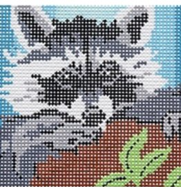 Barbara Russell Youth Collection:  Raccoon<br />5&quot; x 5&quot;