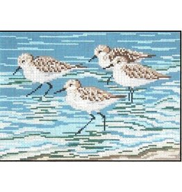 Needle Crossing Sanderlings <br />