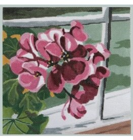 Julie Mar Geraniums<br />