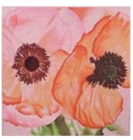 Point of it All Poppies<br />