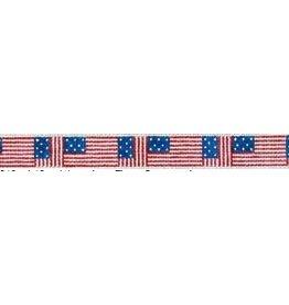 Elizabeth Turner American Flag belt