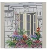 Alice Peterson City Window