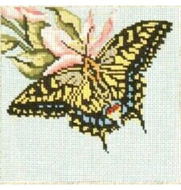 Needle Crossing Anise Swallowtail Butterfly<br />