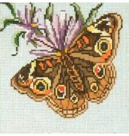 Needle Crossing Common Buckeye Butterfly<br />