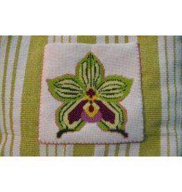 Pischke Pockets Fiji