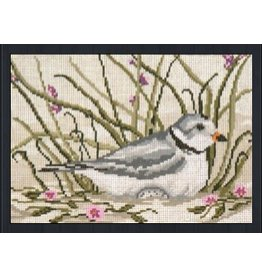 Needle Crossing Piping Plover <br />