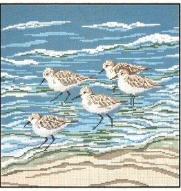 Needle Crossing Sanderlings in Surf<br />