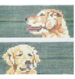 Barbara Russell Golden Retriever belt