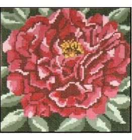 Needle Crossing Crimson Tree Peony<br />