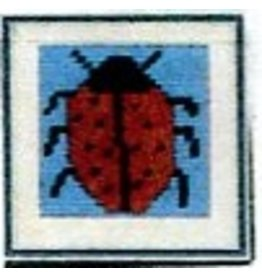 FW Craft Ladybug<br />6&quot; x 6&quot;