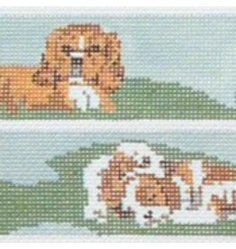 Barbara Russell Cavalier puppy belt